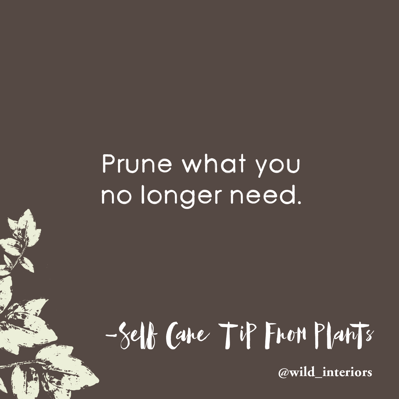 3_13 - Self Care Tip.png