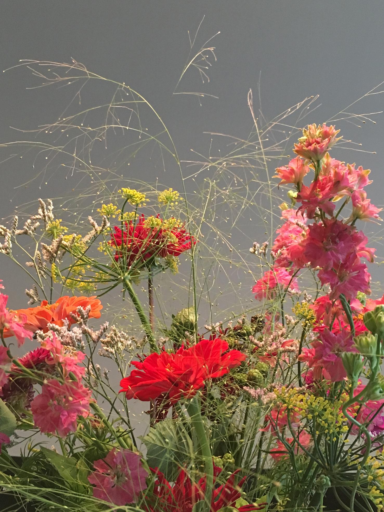 Red Flower Garden.jpg