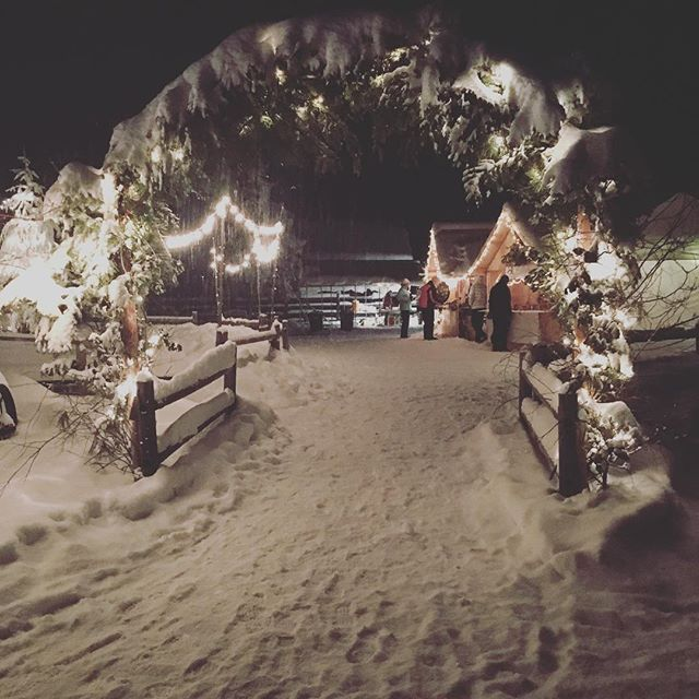 Gateway to the first annual Roseberry Christmas Fair. A vision set into reality. Styled after Nighttime European Holiday Markets. #shoplocal @amyswholefoodcreations @sand_or_sugar @northforkcoffee #goodfriends #newfriends #idahome #bravetheelements #winterwonderland #somuchlocaltalent #proud #joy #gratitude #entrepreneurs #christmas