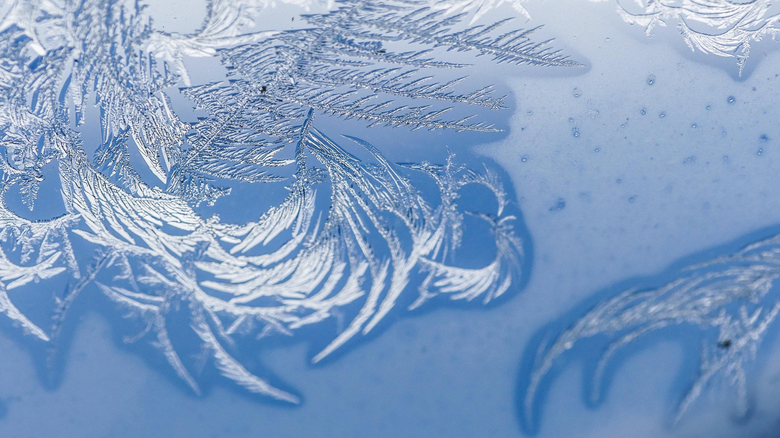 FrostedWindowPanes-1.jpg