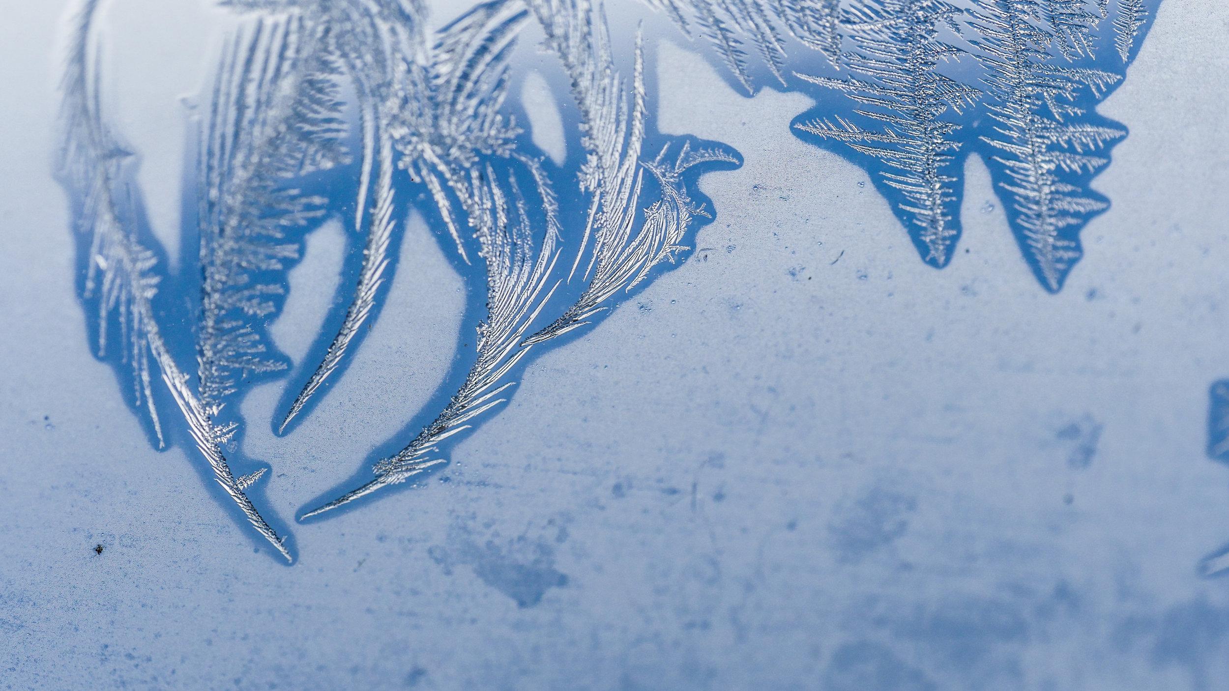FrostedWindowPanes-3.jpg