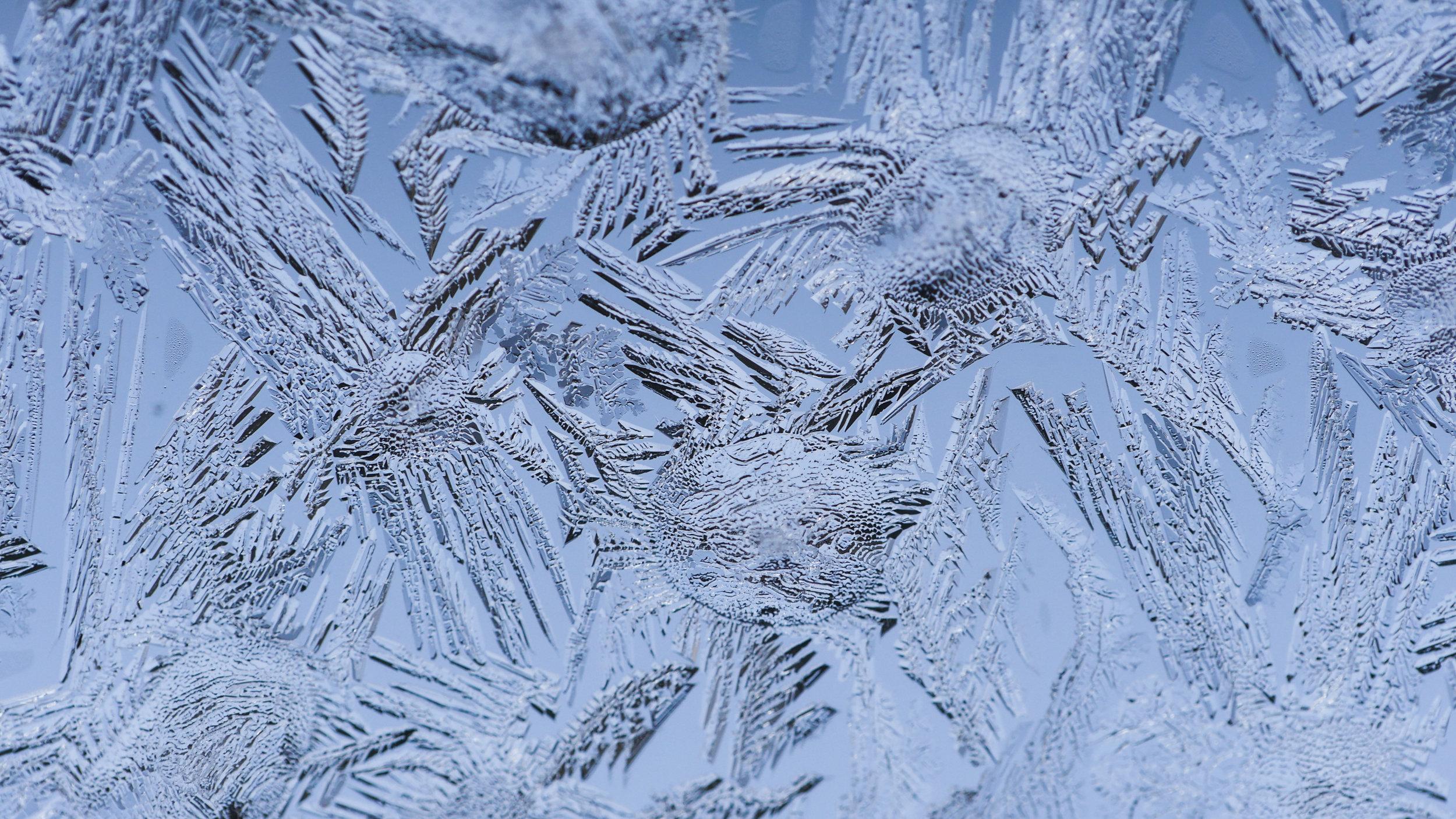 FrostedWindowPanes-8.jpg