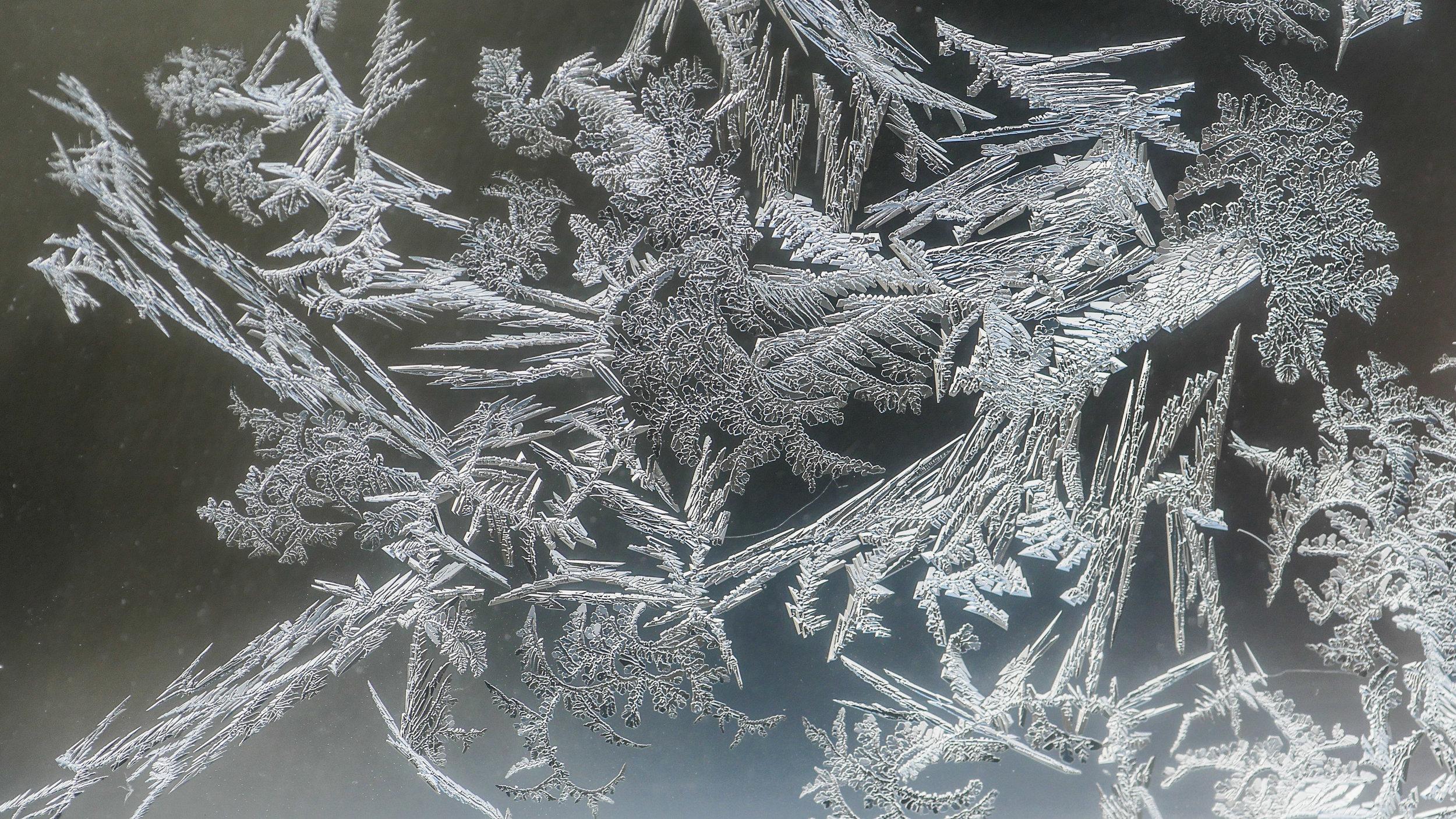 FrostedWindowPanes-9.jpg