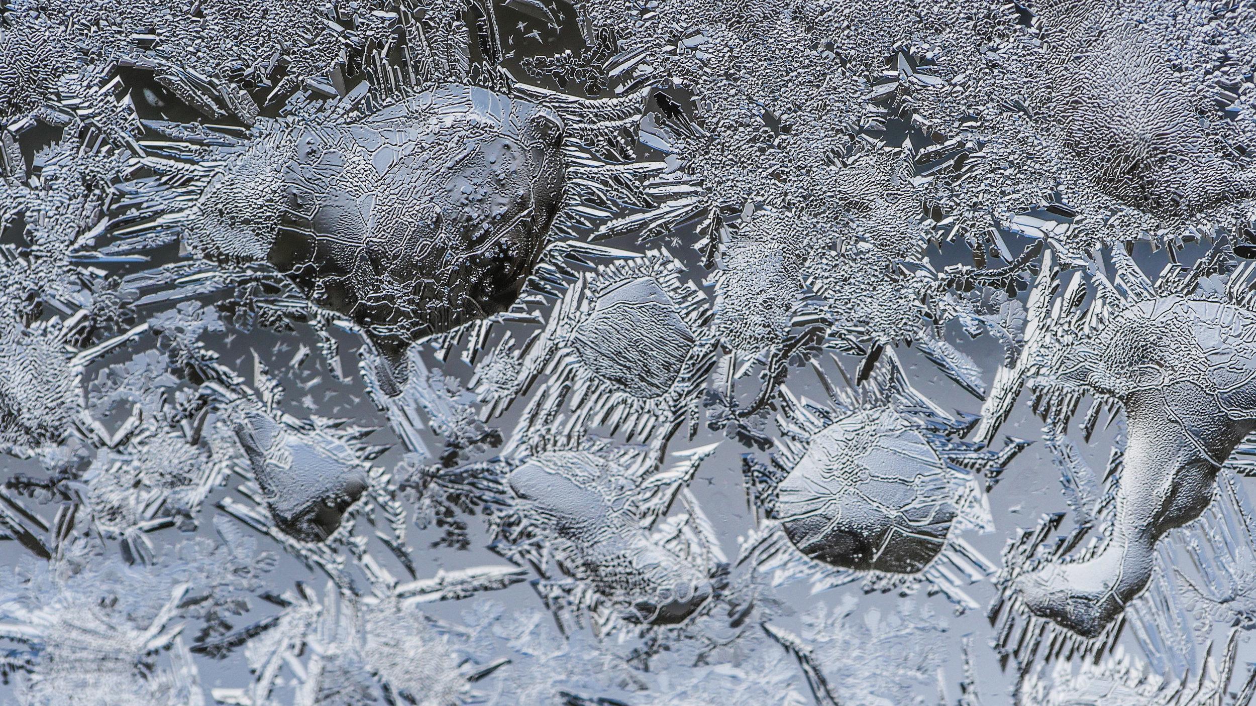 FrostedWindowPanes-11.jpg