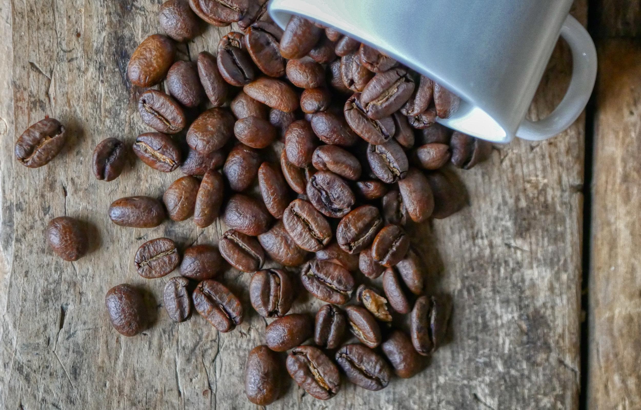Coffee Bean Collection-5.jpg