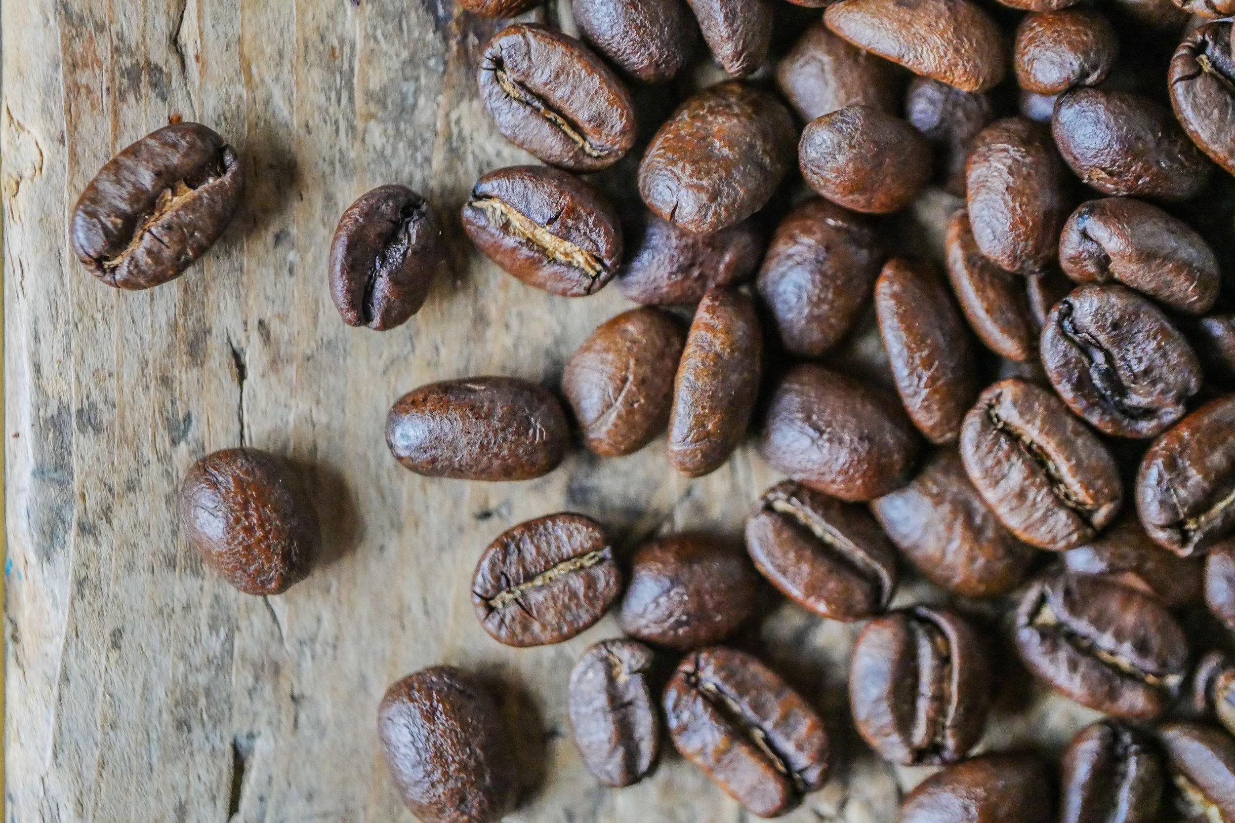 Coffee Bean Collection-6.jpg