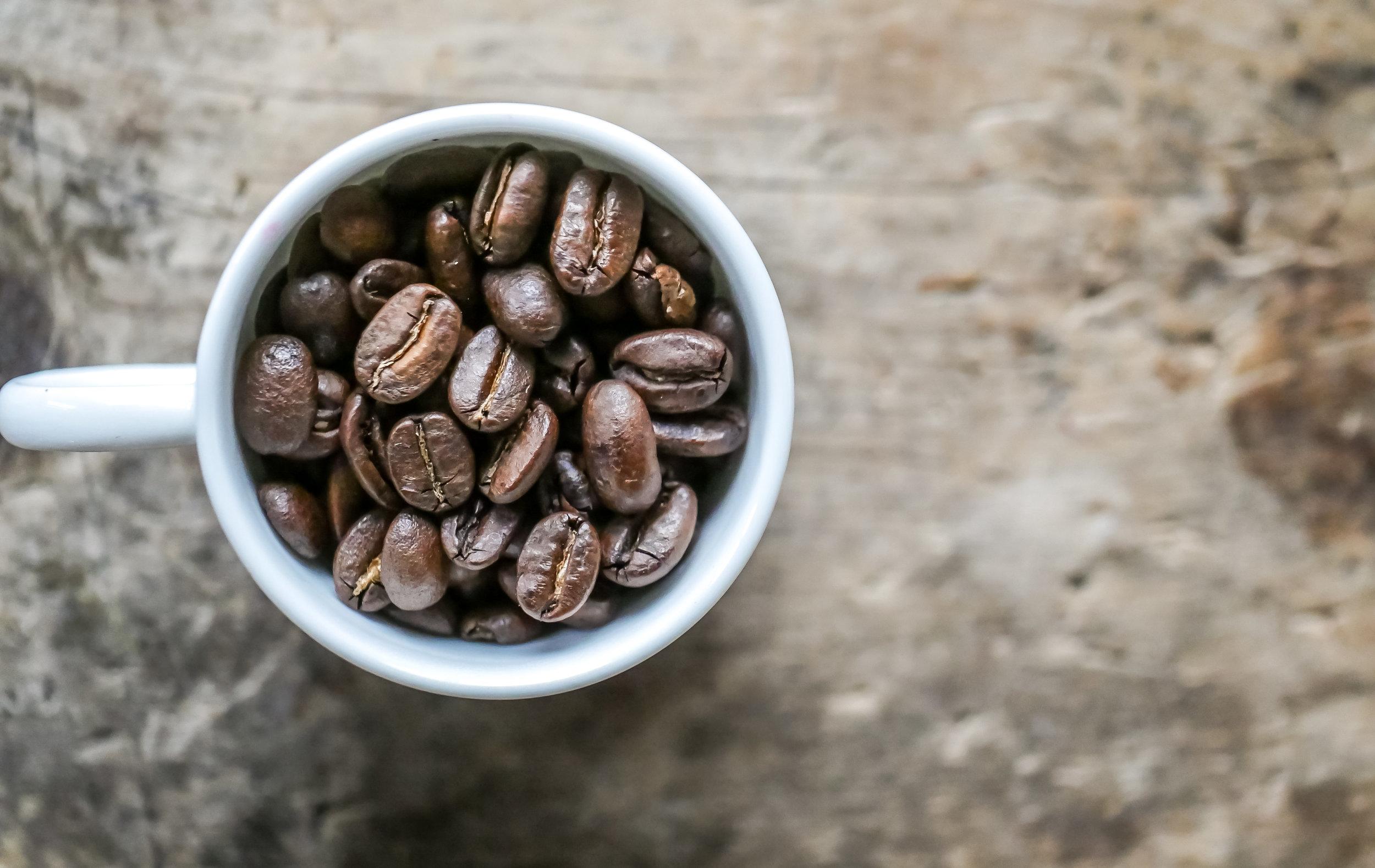 Coffee Bean Collection-10.jpg