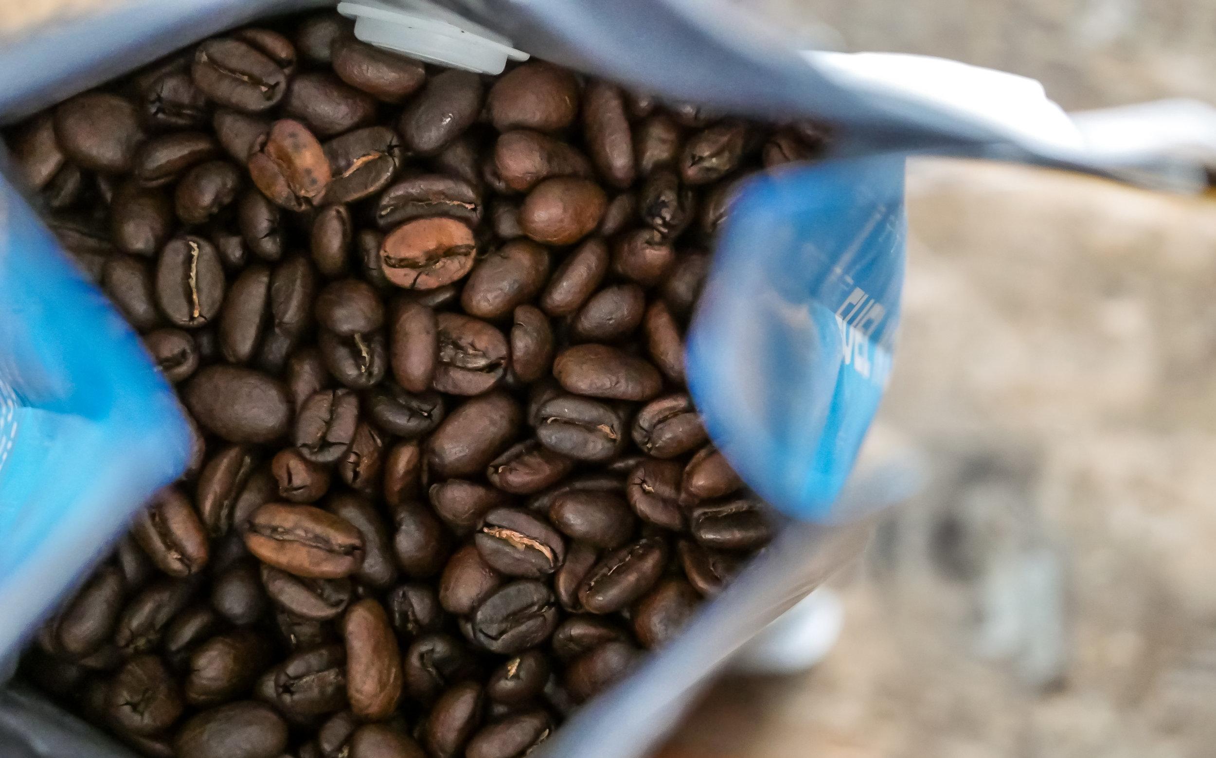 Coffee Bean Collection-12.jpg