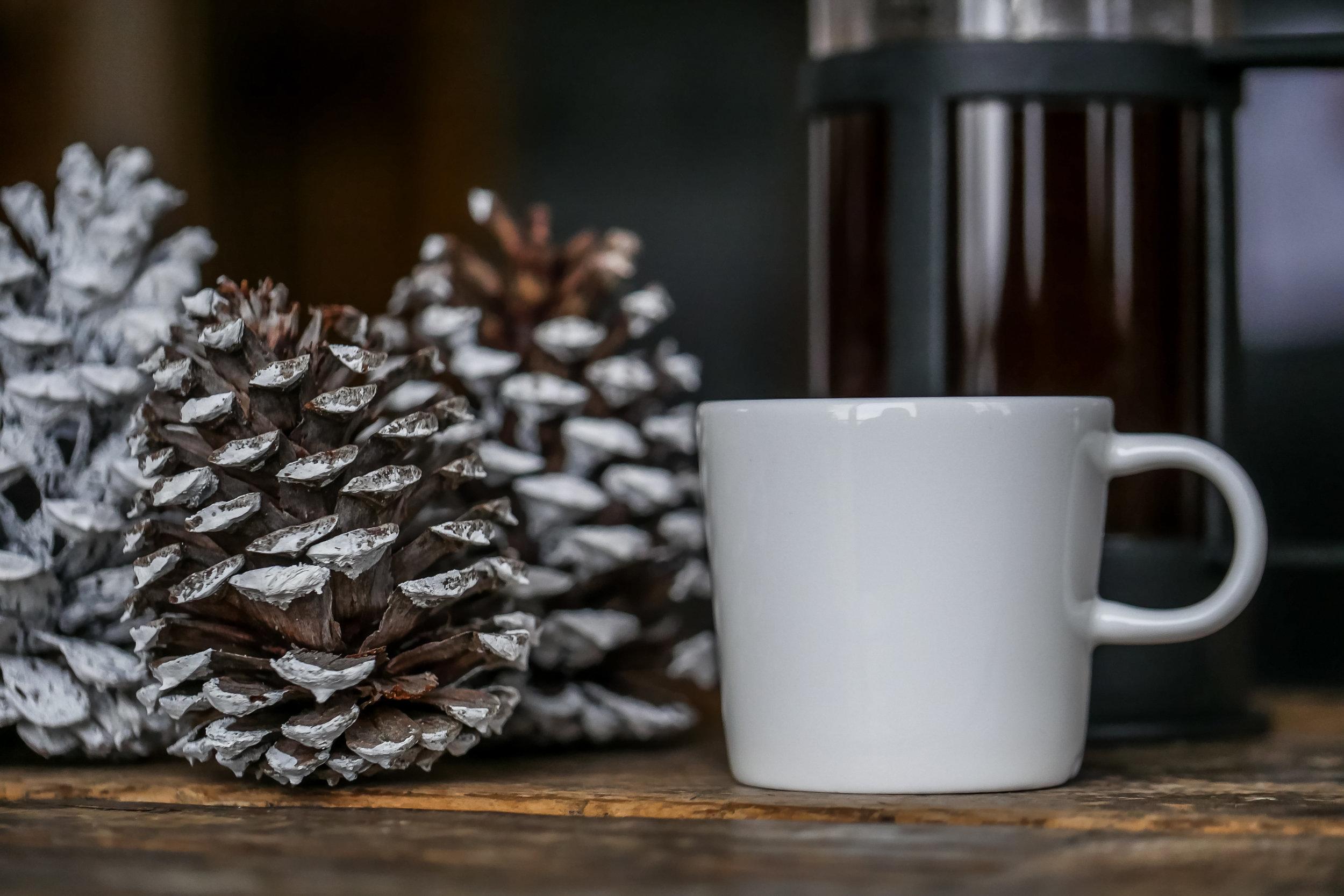 Coffee Bean Collection-13.jpg