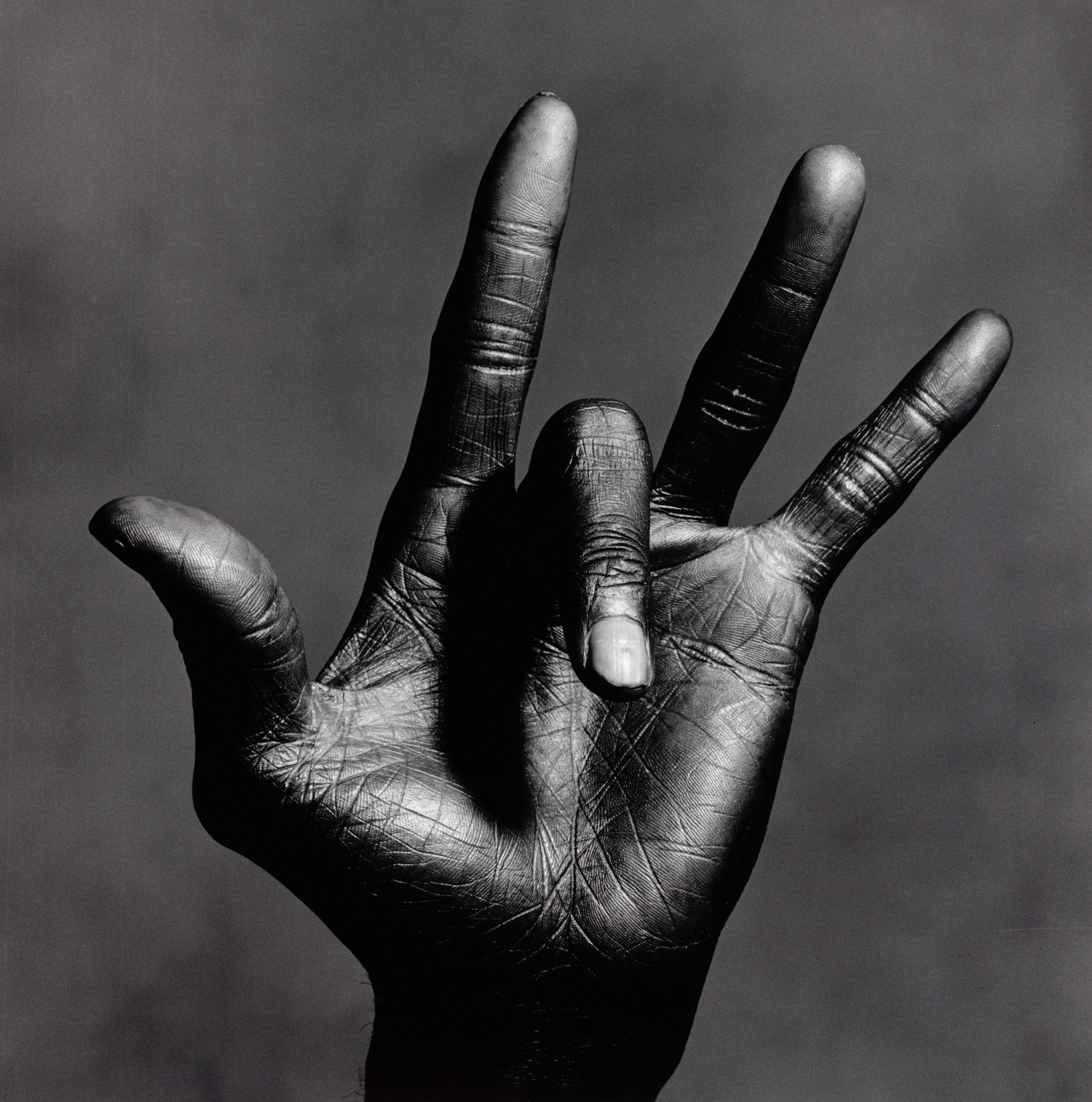 The Hand of Miles Davis , New York, 1986 Gelatin silver print © The Irving Penn Foundation