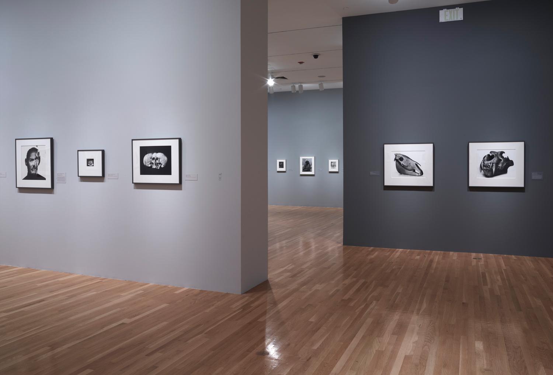 Courtesy of Dallas Museum of Art, Dallas TX.
