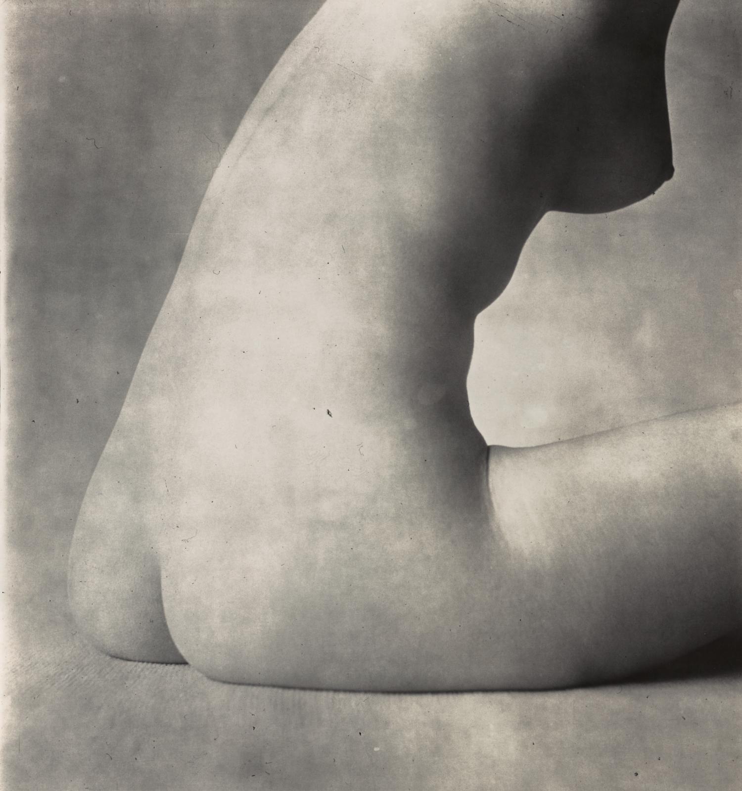 Nude No. 18 , New York,1949–50 Gelatin silver print © The Irving Penn Foundation