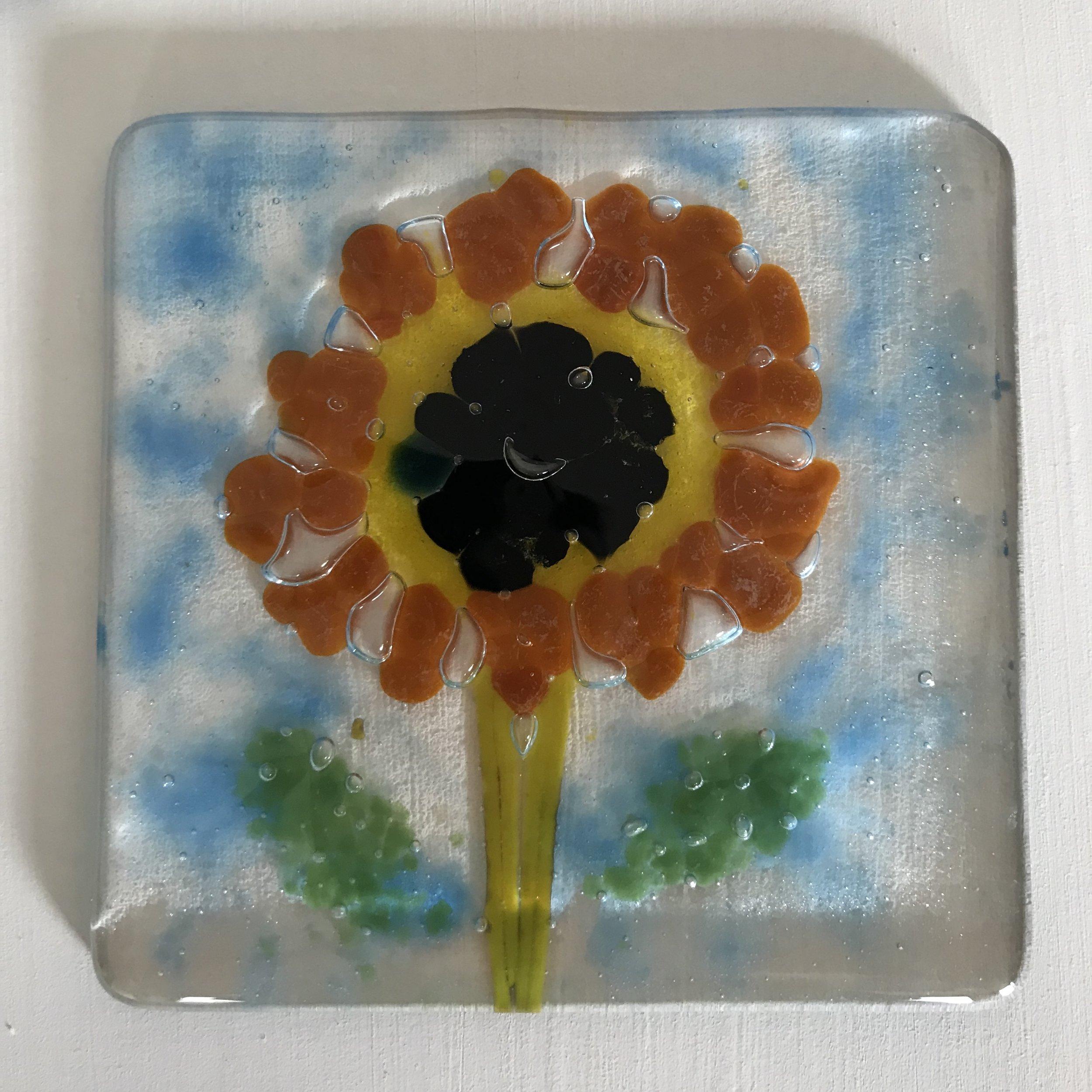 Sunflower after firing