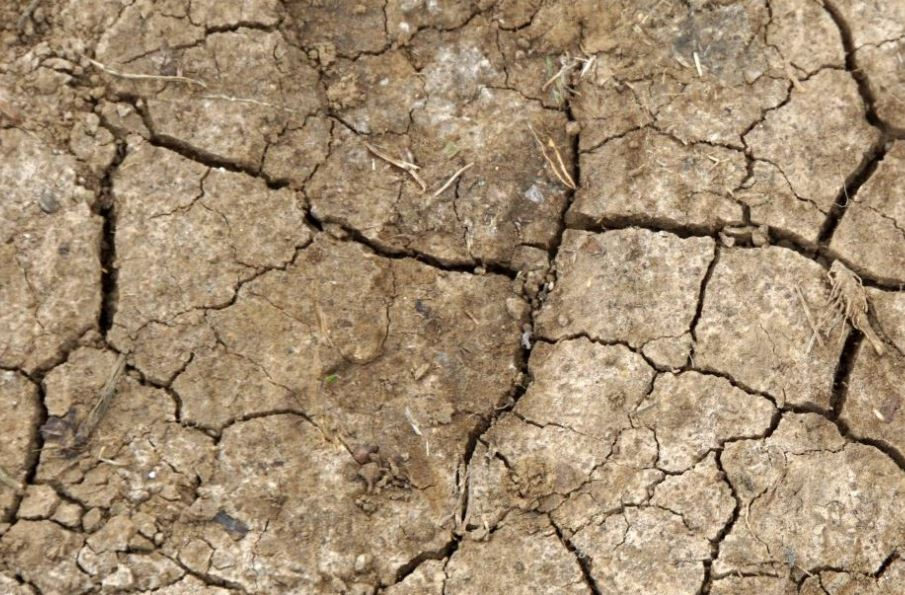 The Hidden Cost of UK Food: Soil Degradation    Sustainable Food Trust  May 2018   Globally, more than half of all soils are now classified as degraded. The loss of soil carbon across the UK costs us £3.21bn per year & an est. $6.3 to $10.6 trillion at a global level.