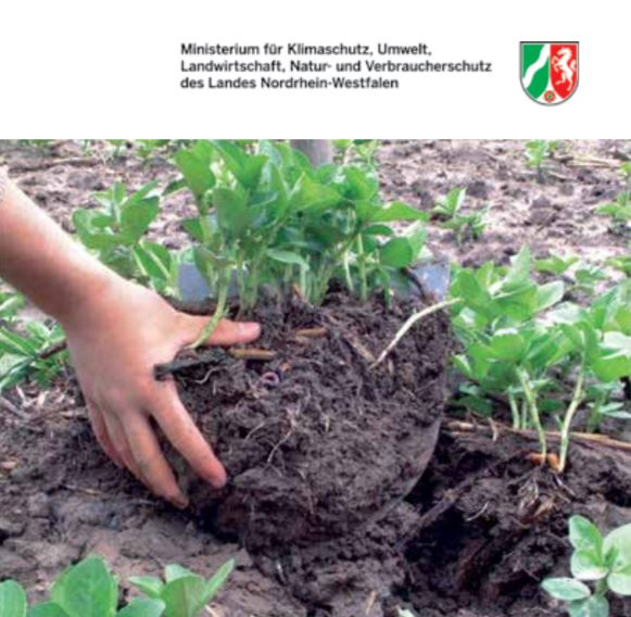 Preventing soil compaction: Preserving & restoring soil fertility    Umwelt  May 2016   Especially detrimental is soil compaction which occurs deep in the subsoil, as this compaction cannot be reversed with normal soil cultivation .