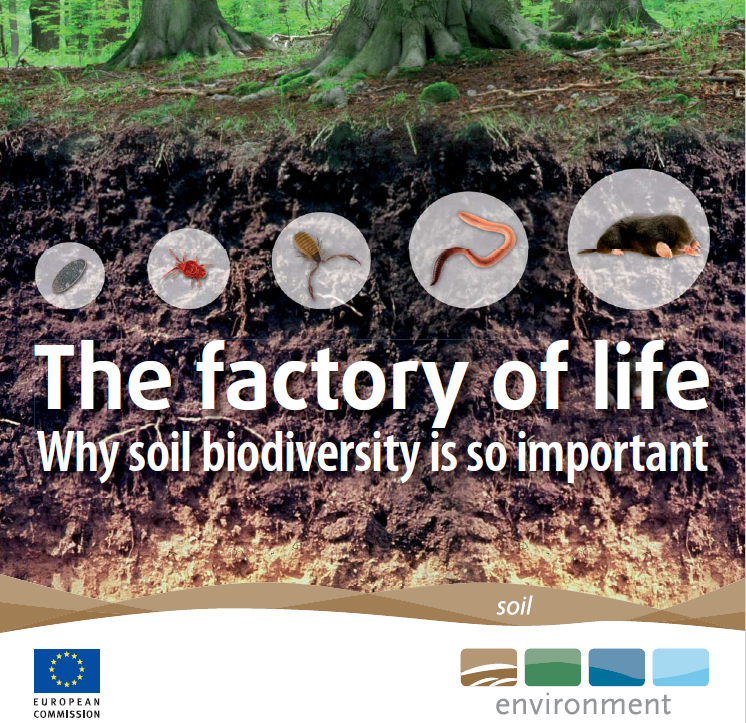The Factory of Life: Why soil biodiversity is so important    European Commission  2010   Biodiversity loss & climate change are two of the most pressing challenges of our time, & soil is part of the solution to both. Yet it is under constant threat, largely from activities we can control.