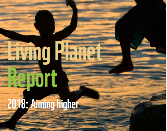 Living Planet Report: Aiming Higher    World Wide Fund for Nature  October 2018   All economic activity ultimately depends on services provided by nature… it's clear that nature is not just a 'nice to have'.