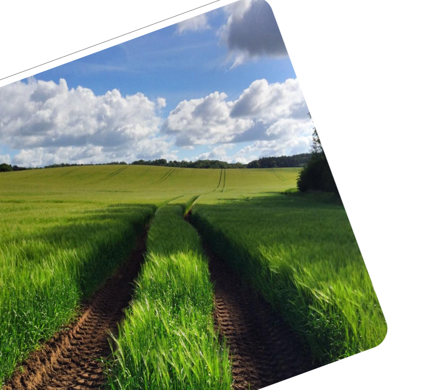 Research to develop the evidence base on soil erosion and water use in agriculture   Cranfield University, June 2015