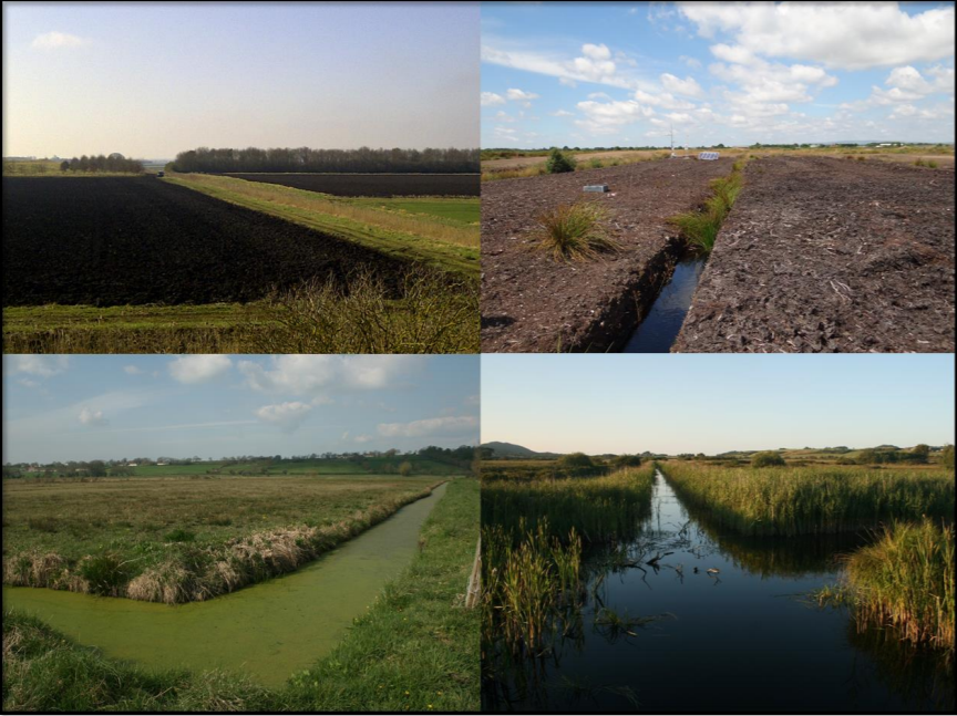 Lowland peatland systems in England & Wales – Evaluating greenhouse gas fluxes and carbon balances    CEH  2017   Lowland peatlands are one of the UK's most carbon-rich ecosystems & are now amongst the largest sources of GHG emissions.