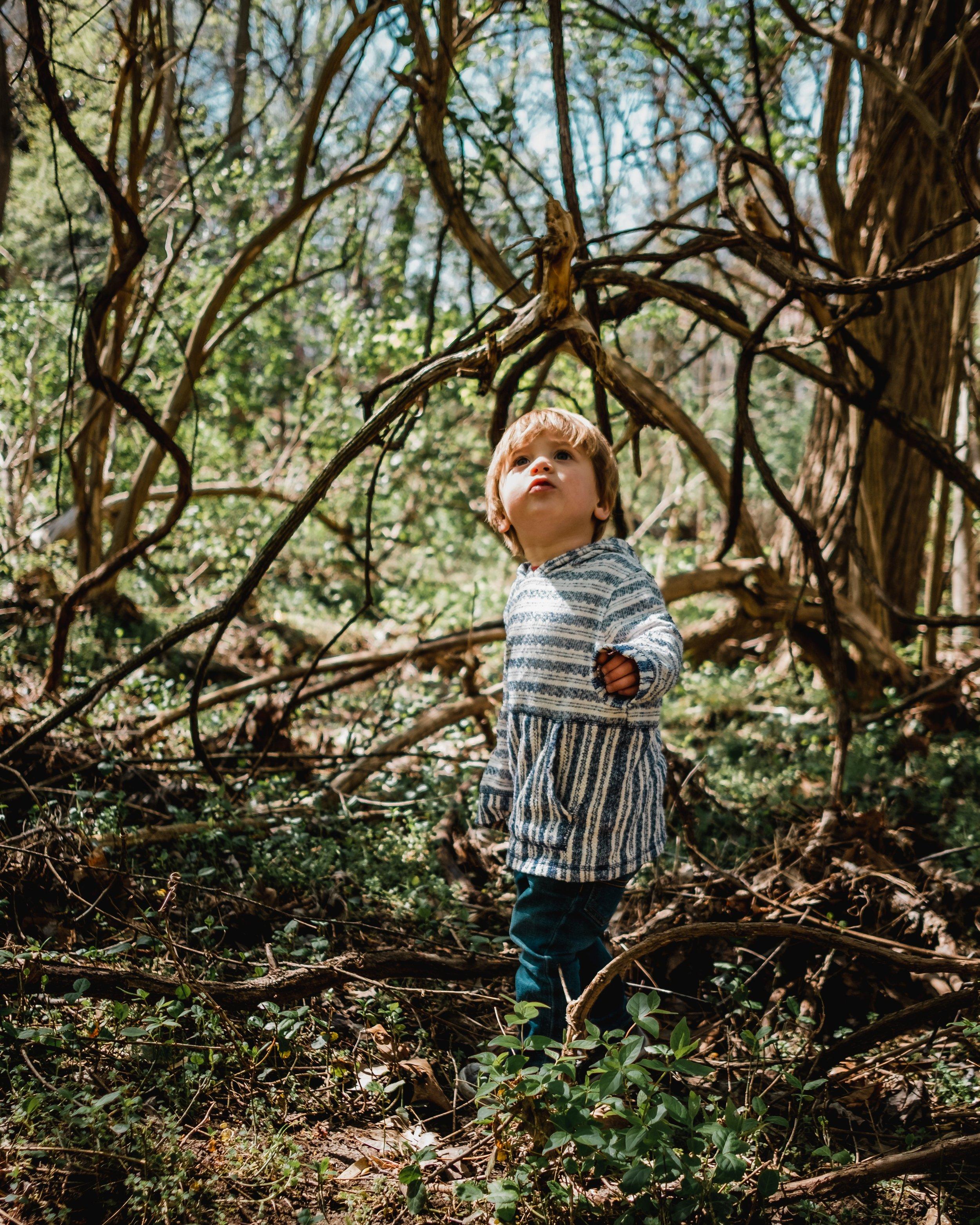 boy in woods.jpg