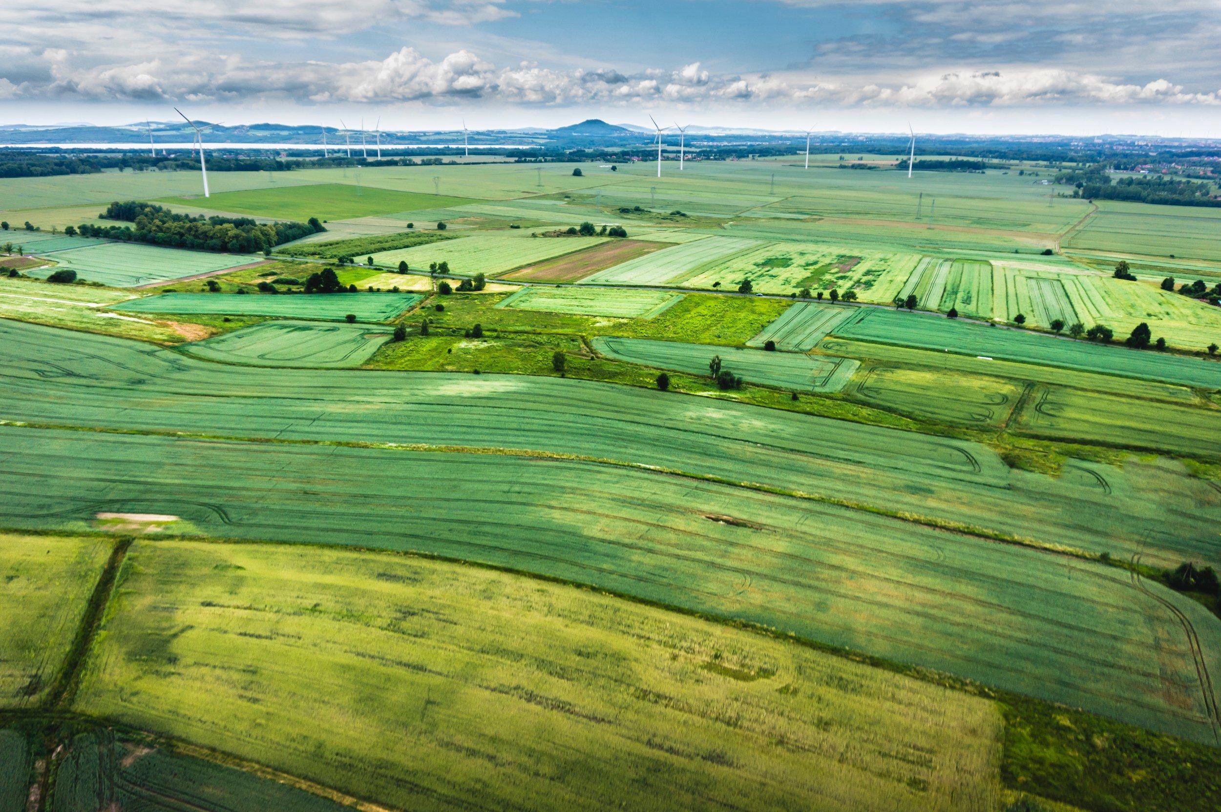 Overhead green fields.jpg