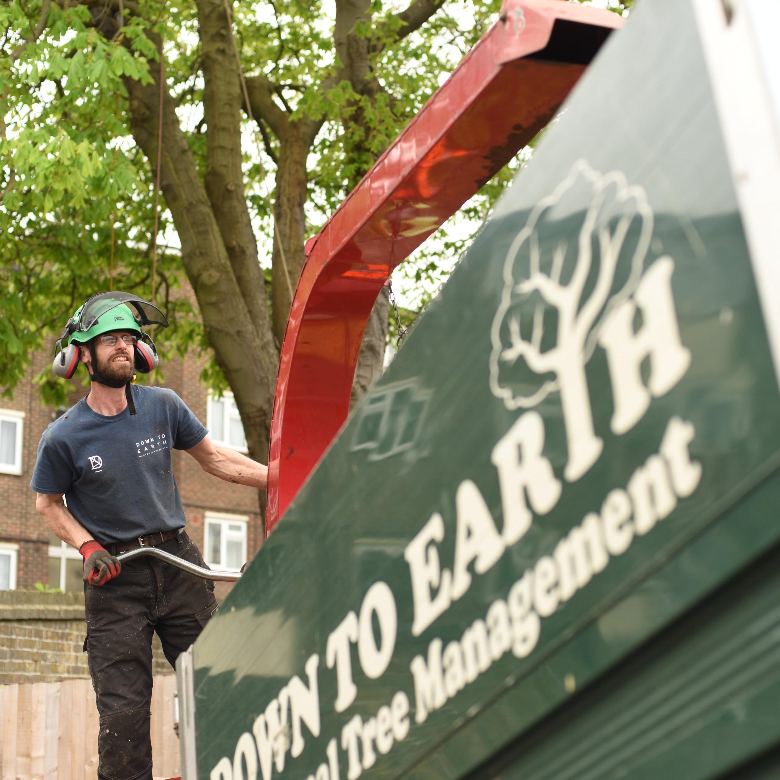 Laurence - Arboriculturist