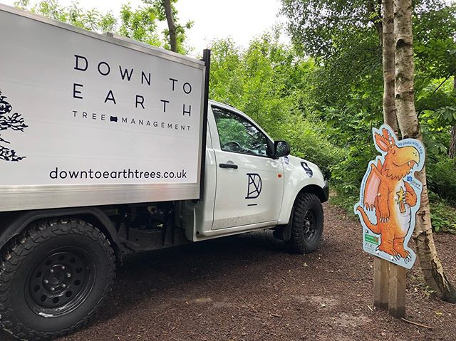 Carrying out priority tree safety works and aerial inspections at Bedgebury Pinetum for @goapebedgebury and @forestryengland today.  Our new Isuzu D-Max making friends with the locals!