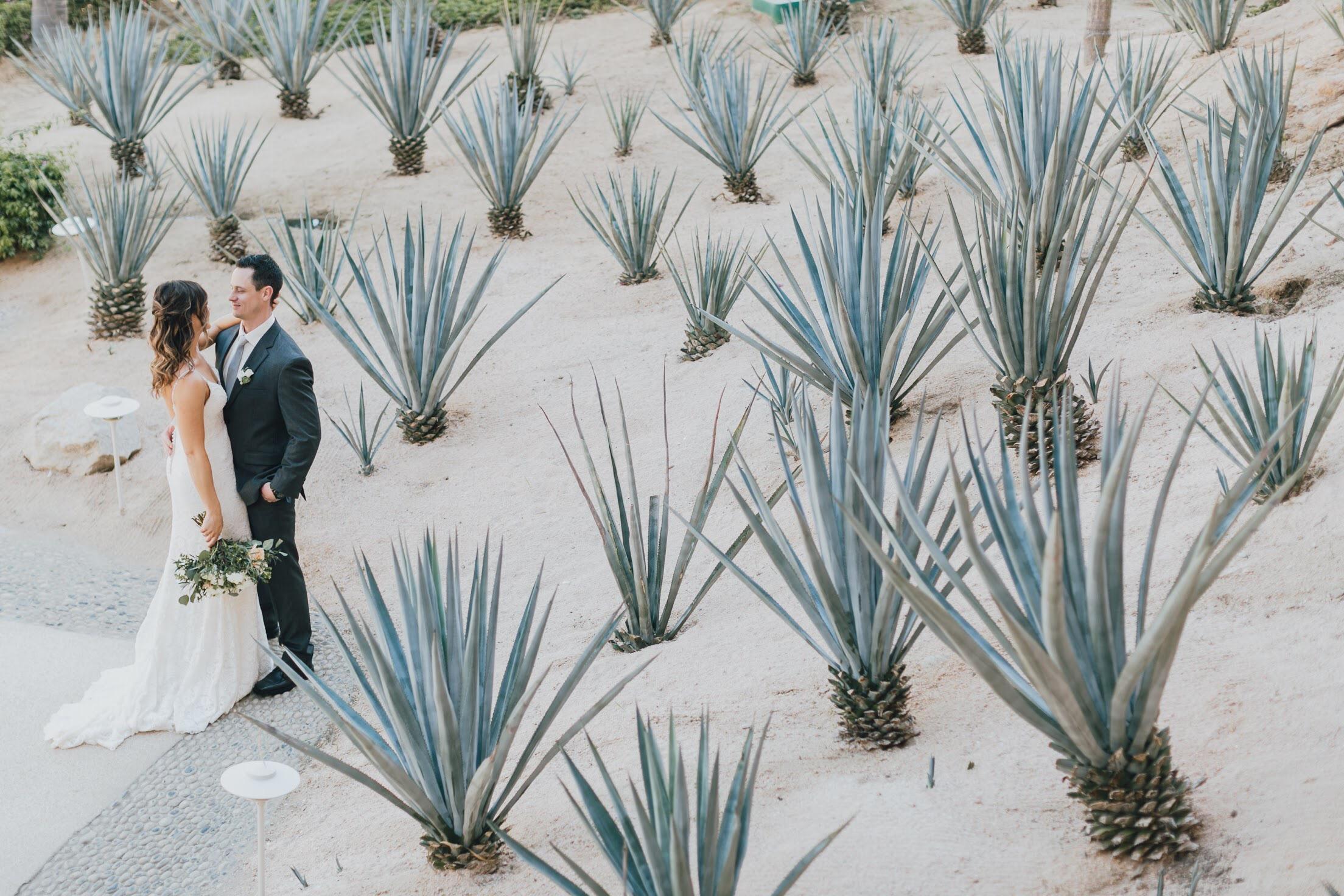 Photography:  D. Lillian Photography   Venue:  Grand Fiesta Americana   Florals:  Del Cabo Weddings