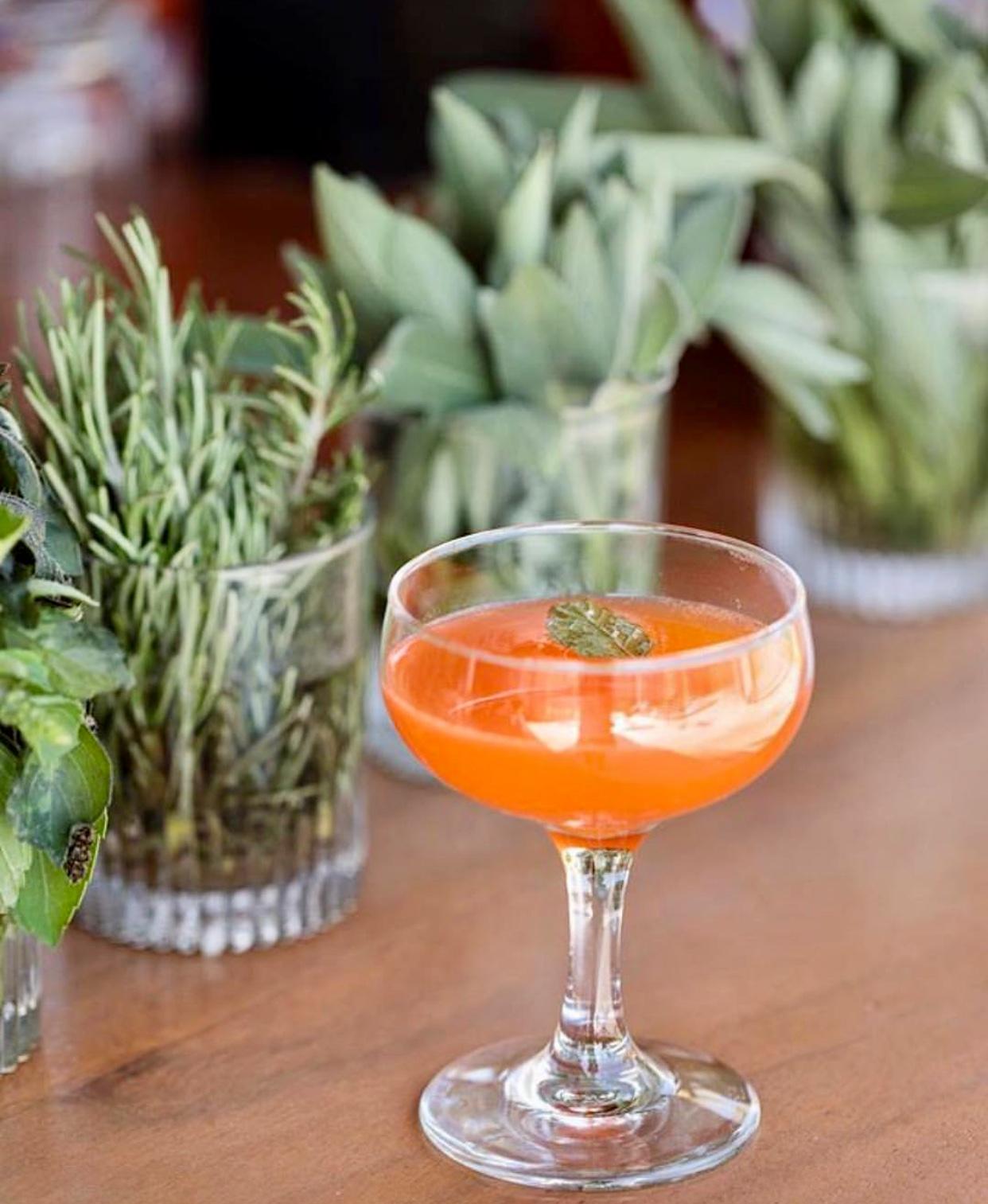 Photography:  Acre Baja  / Venue:  Acre Baja   Reina de la Baja: Aperol, orange, lime, sparkling wine & damiana tincture