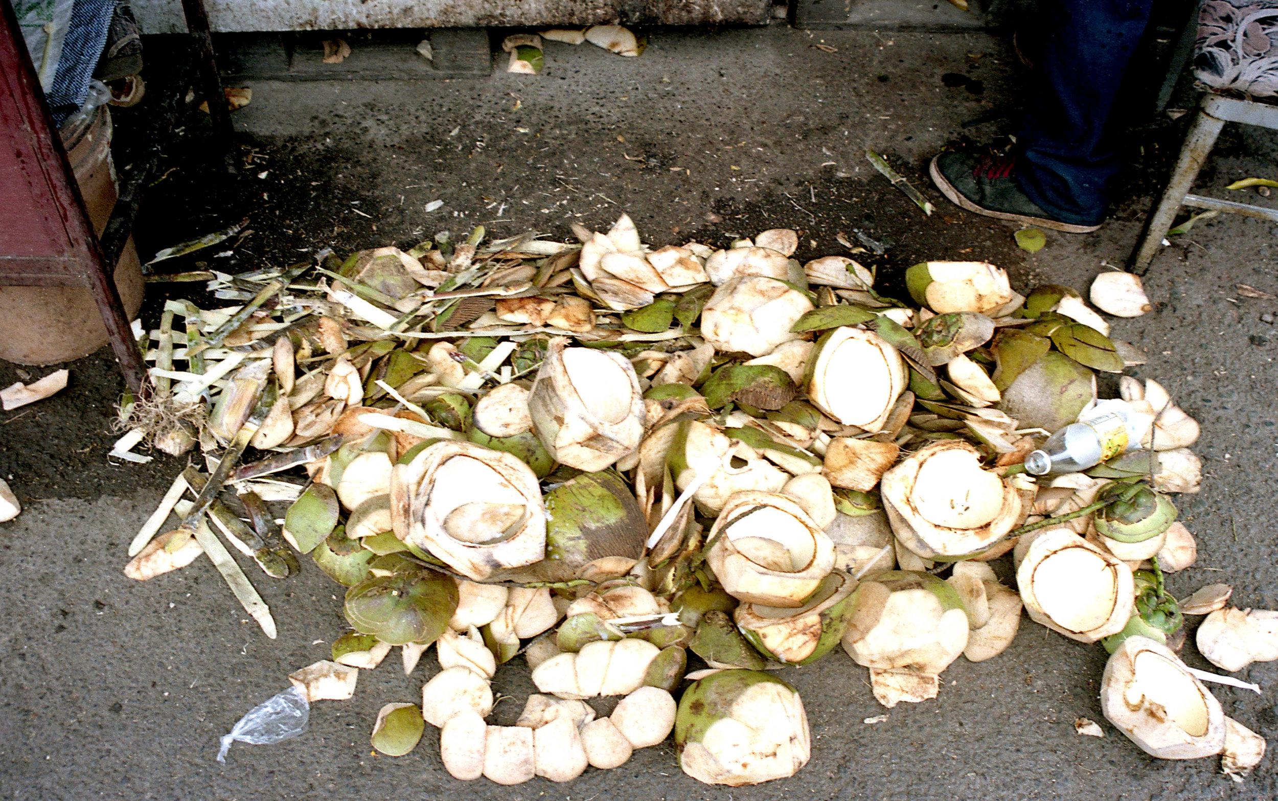 7. Coconut Scraps-2.jpg