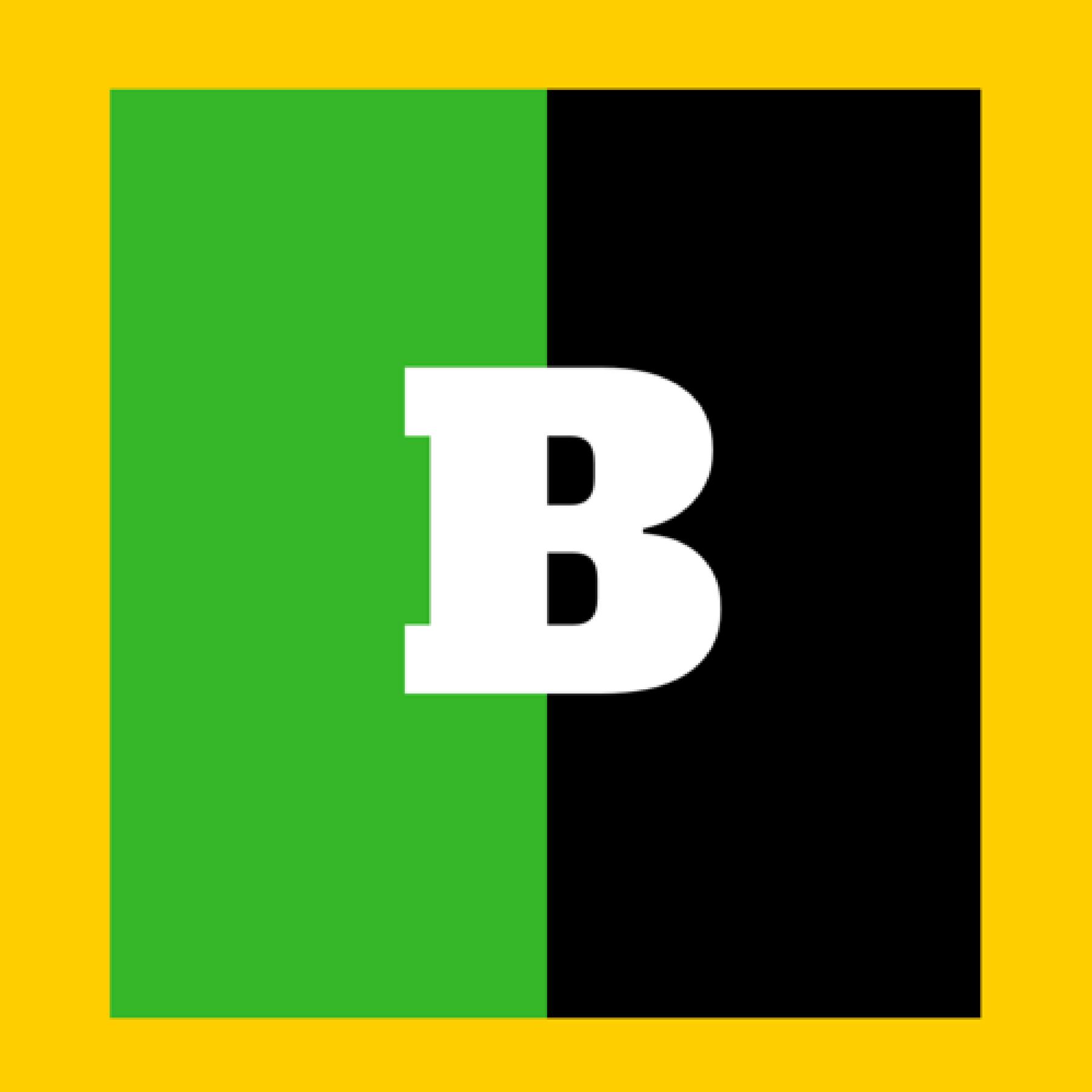 BASHY Logo.png