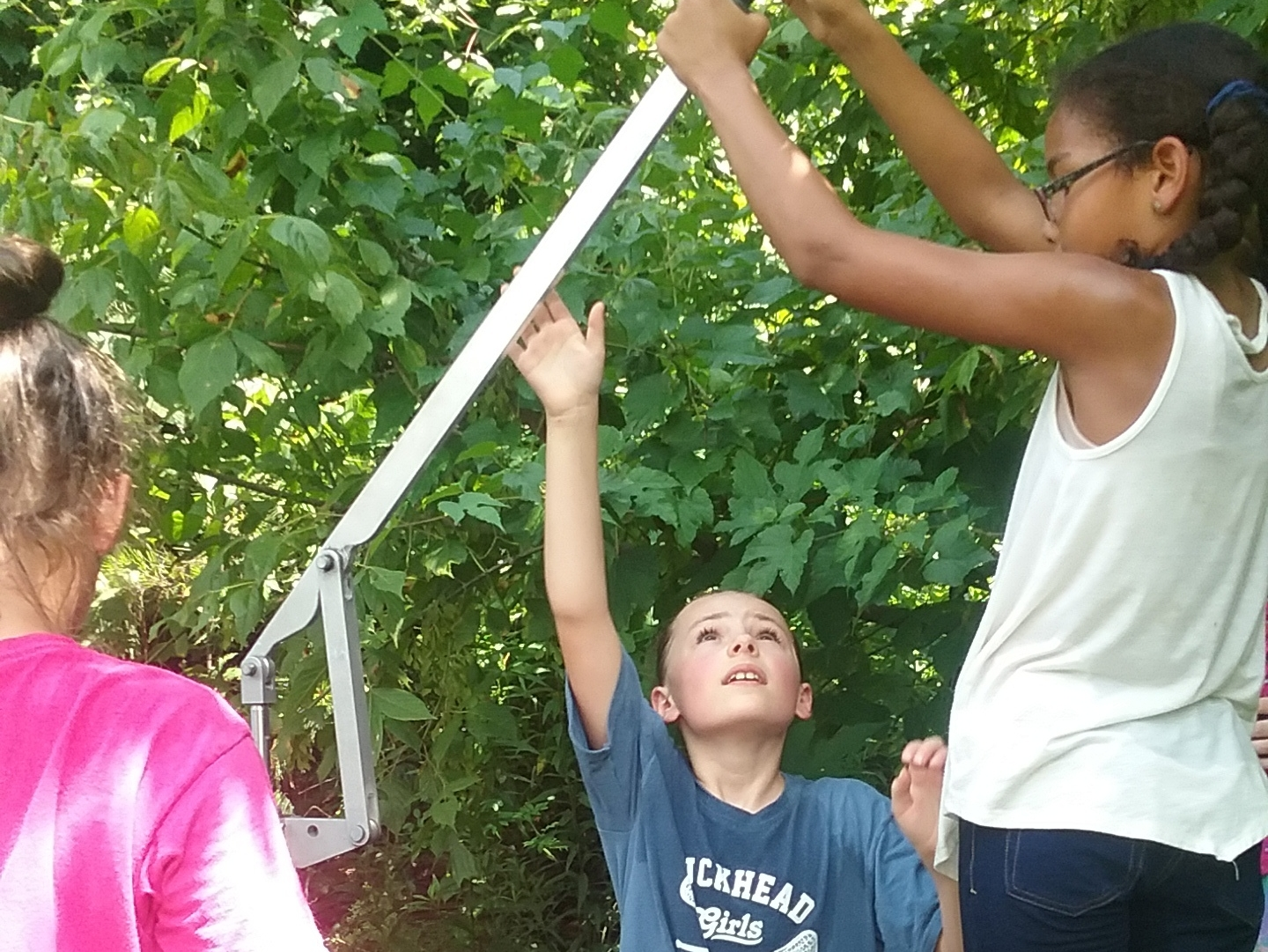 Fort Building  Work with your peers to build a shelter made from sticks, rocks, leaves, and vines. Discovering how to build with and balance these natural items can be challenging; good communication is essential. Can you make a fort your entire team can sit in?