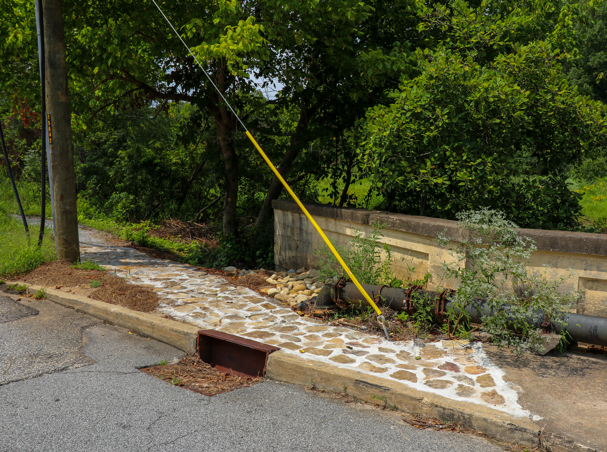 Flagstone landing on the Painted Turtle Trail
