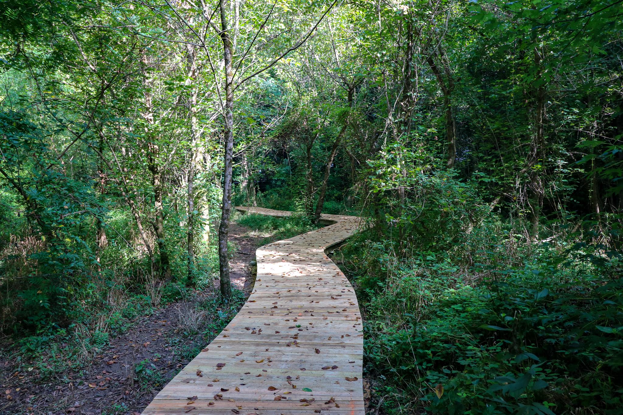 Boardwalk on Beaver Tail Trail.