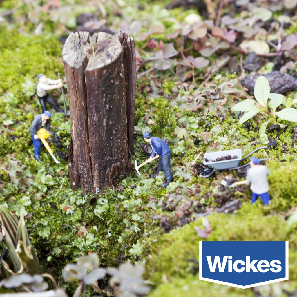 Wickes: Ground Work   Role: (Photography/Design)