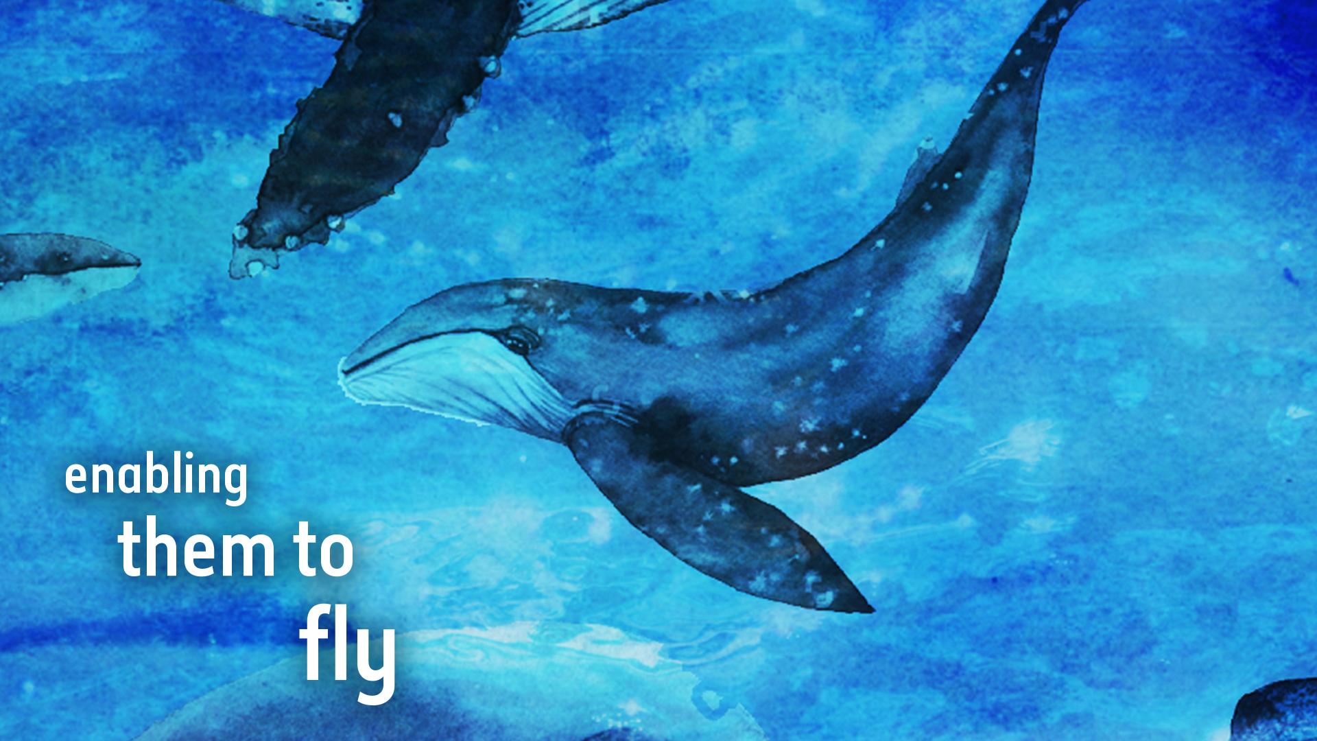 15 - Enabling them to fly.jpg