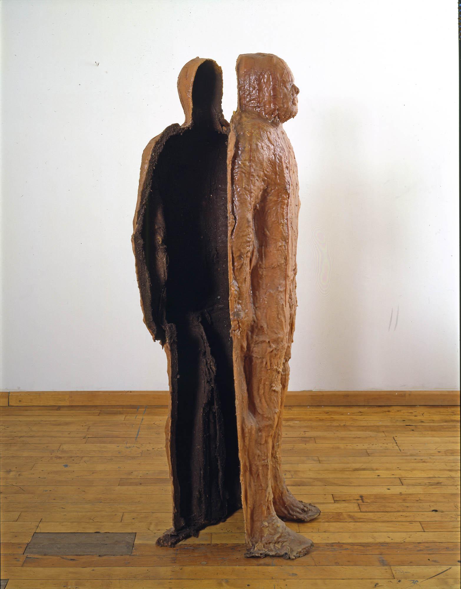 Decentered Skin, 1995.