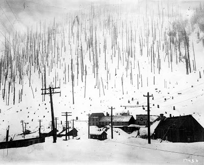 """Photographs of the Wellington Avalanche and the disaster wreaked by the """"white cascade"""" of snow."""