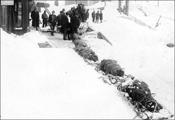 The bodies of the dead were taken away from the disaster site in a long parade of tobaggans that were tied together.