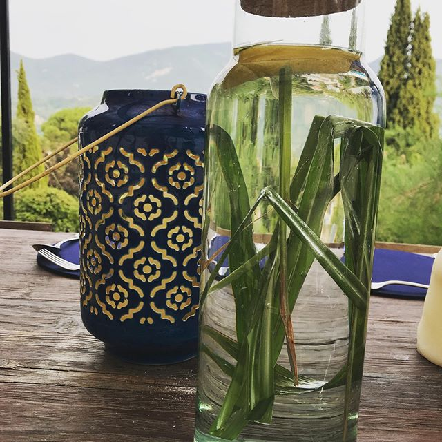 Our neighbour Elsebeth let us pick herbs for @kbmundie retreat from her incredible garden, including this lemon grass for a dinner infusion. We also had some of her home grown saffron on our morning smoothies with its wonderful array of health benefits @laureinprovence