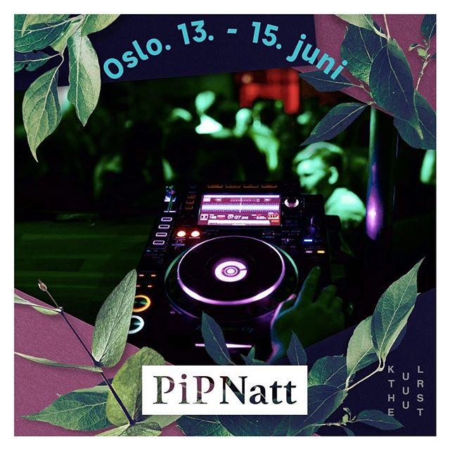 Vi gjør oss klare for @pipfest og PIPNATT her på kulturhuset de neste tre dagene! Konsertstart kl 22 hver kveld i boksen 🔥 🔥 Gratis og gøy! foto: @jankhur #kulturhusetioslo #piknikiparken