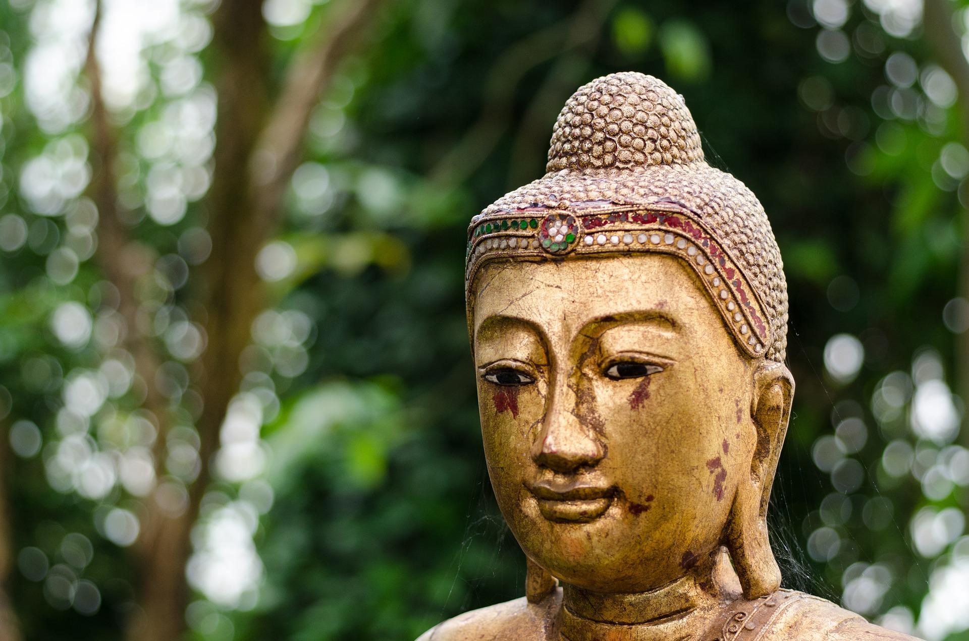 buddha-832803_1920.jpg