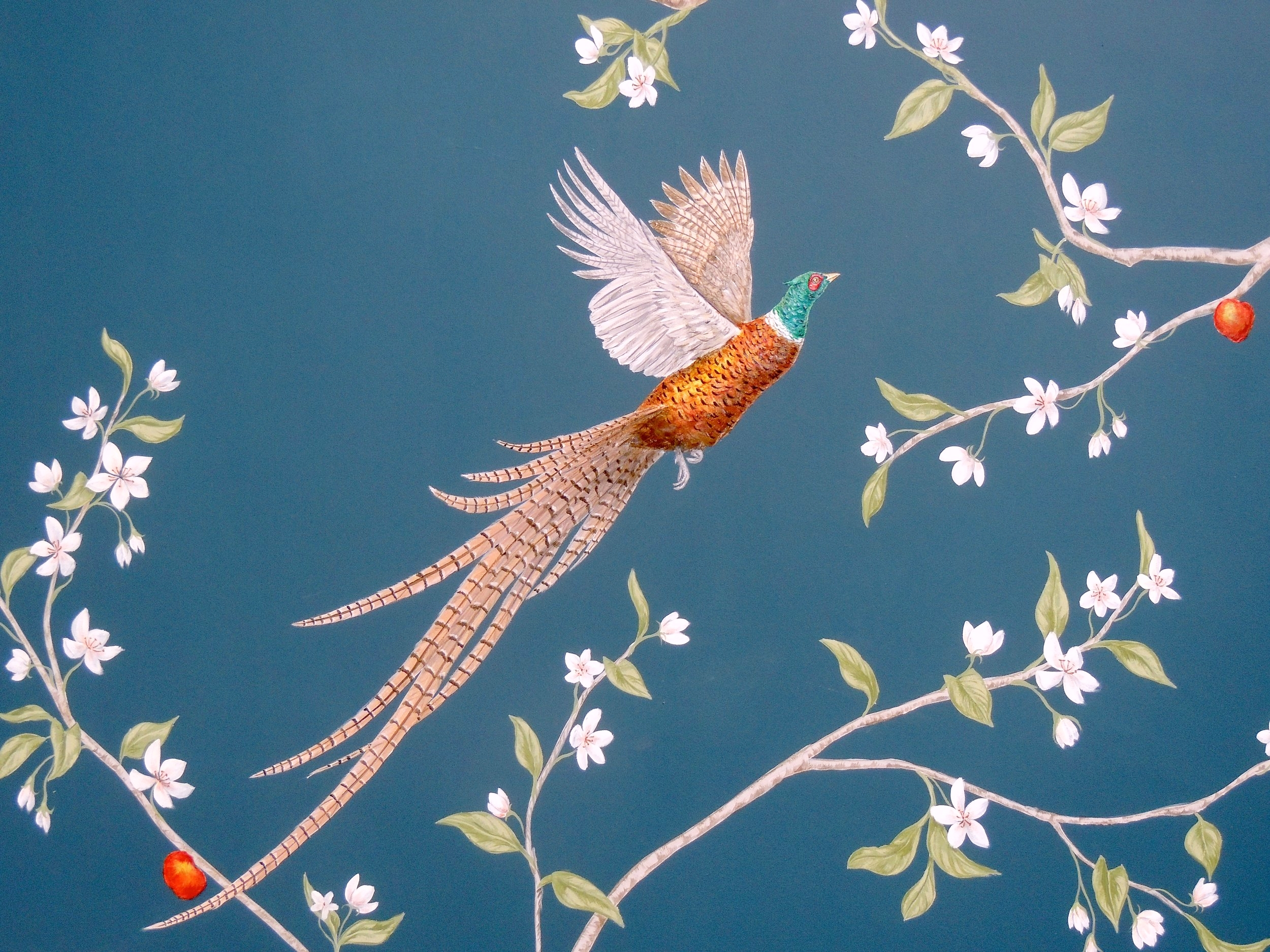 Collared Pheasant and Apple Blossom on blue, wall mural by Frederick Wimsett
