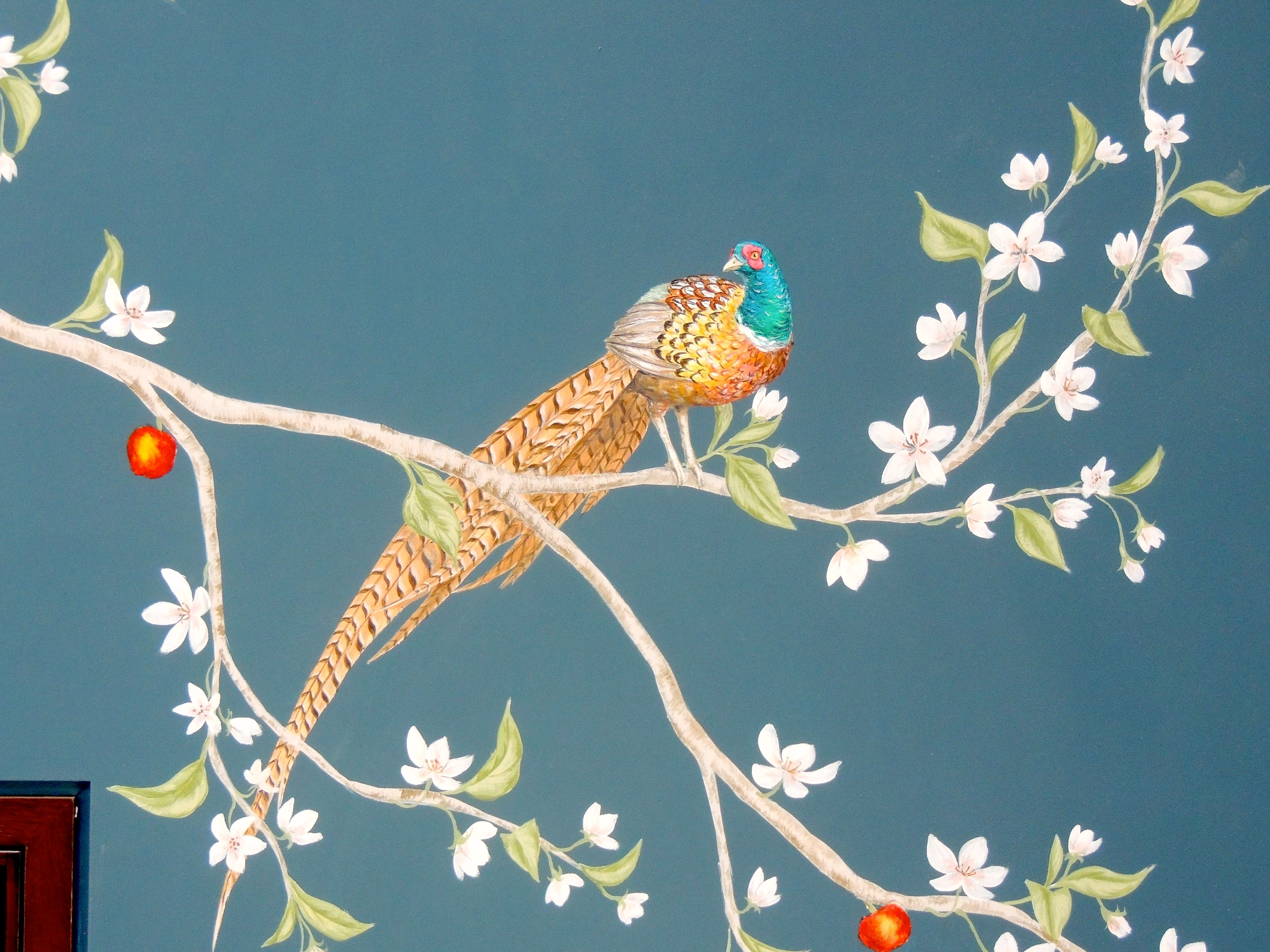 Frederick Wimsett - murals and artistic design - Collared Pheasant on Blue.jpeg