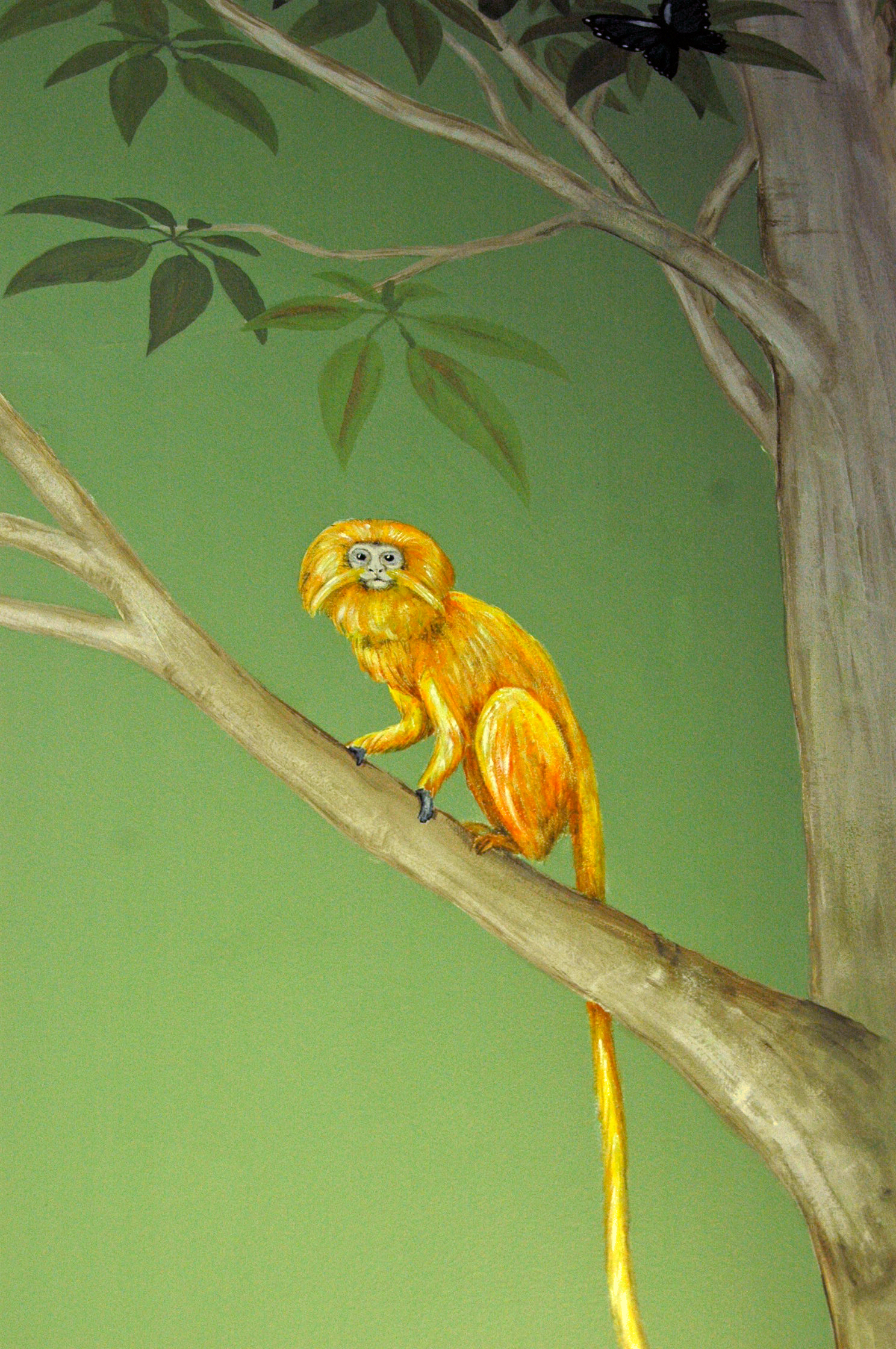 Rainforest Tamir Frederick Wimsett - murals and artistic design - other projects.jpg