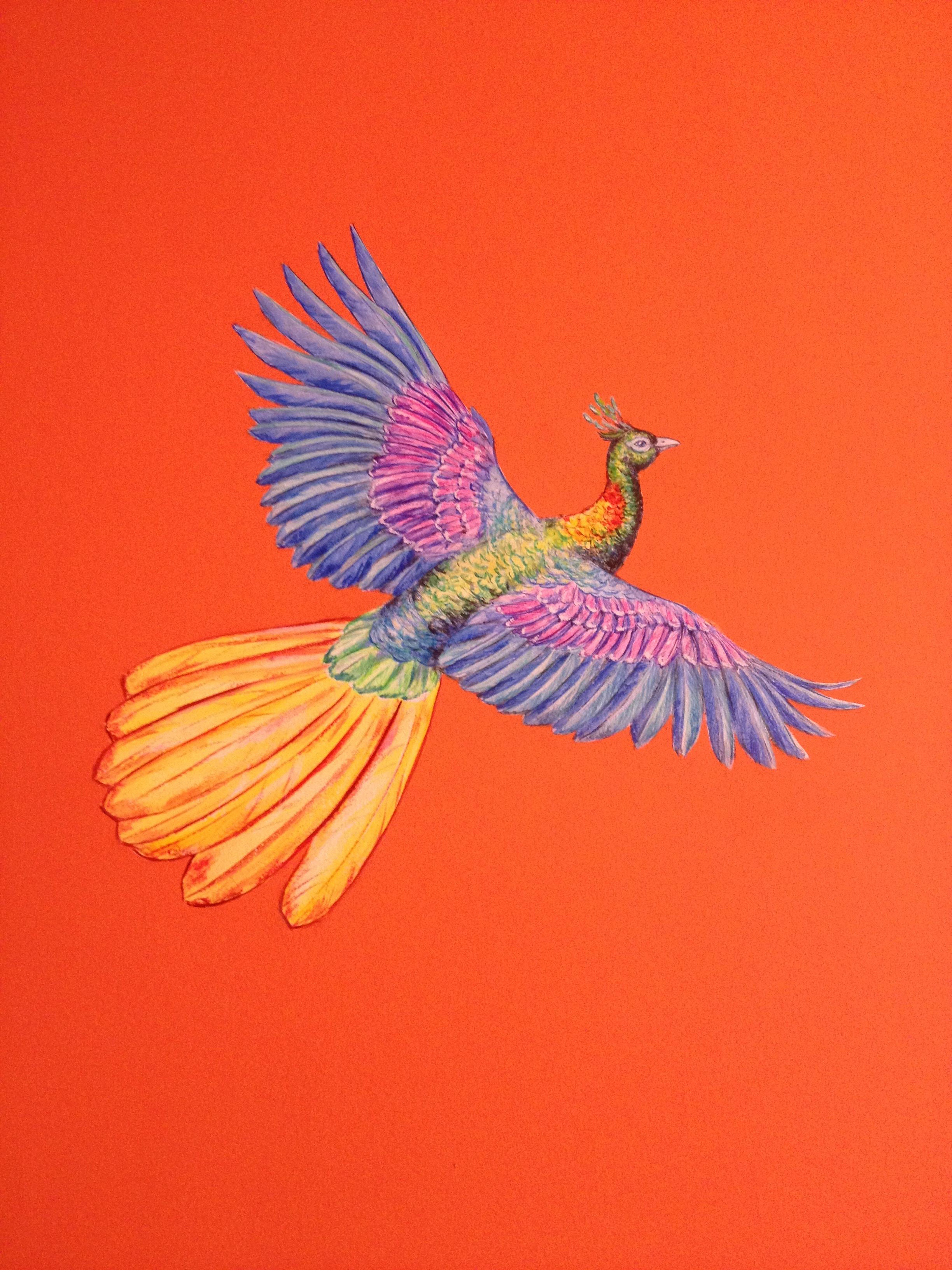 cozmo orange stairwell - detail - Frederick Wimsett - murals and artistic design - WALLS .JPG