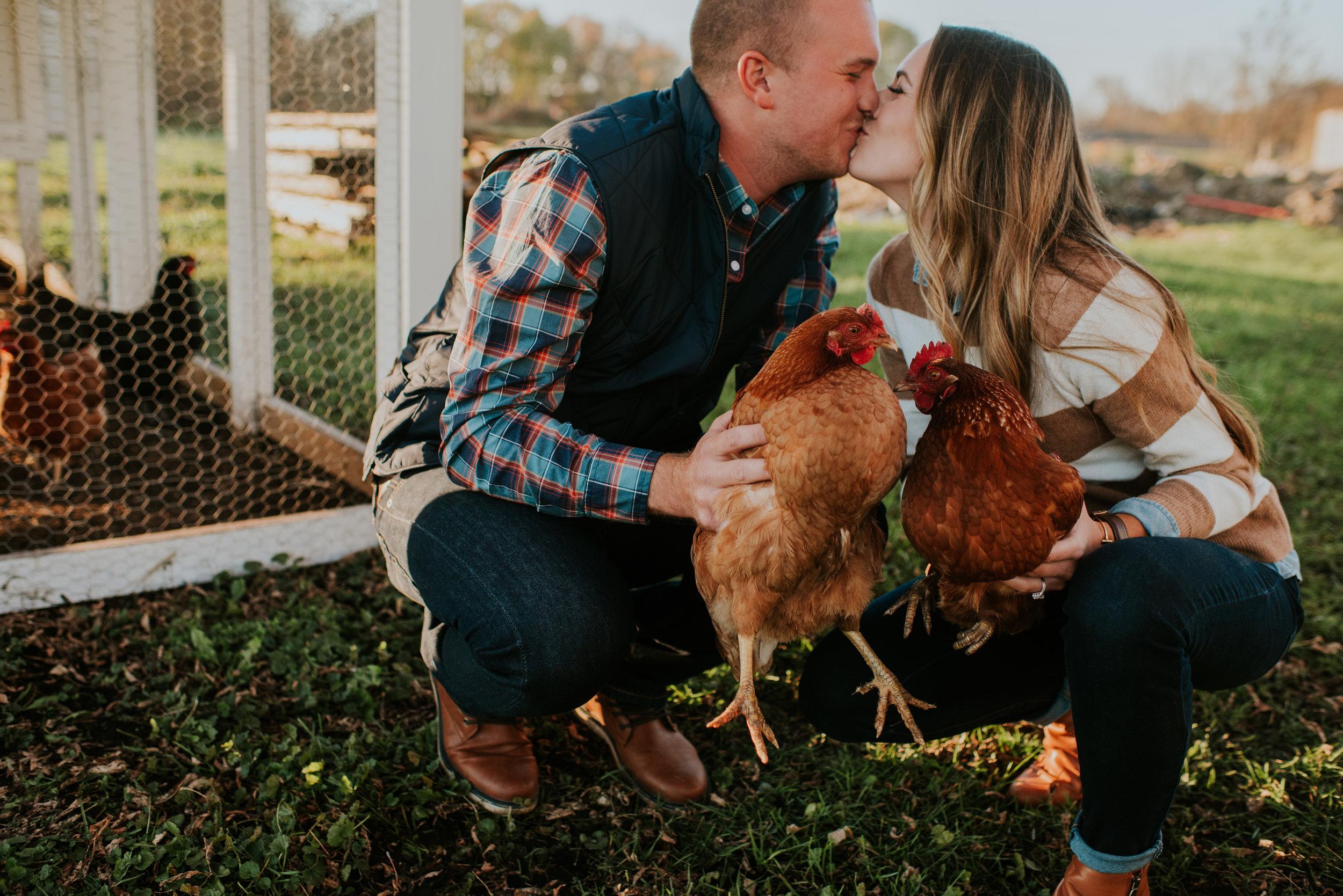 chickens (8 of 173).jpg