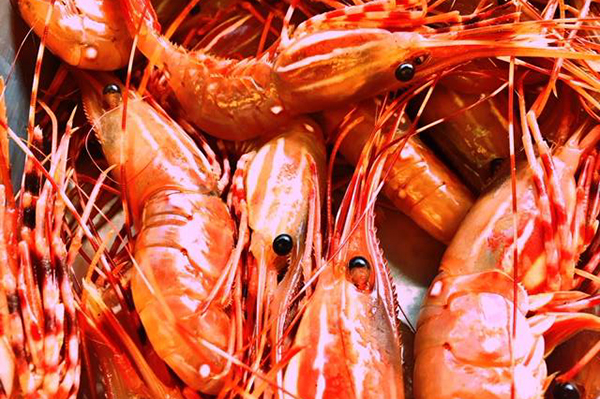 BC SPOT PRAWNS Caught off our west coast commercially during May and June. They have a natural sweet flavour and no vein to clean out. They are extremely versatile and will turn out fantastic any way you cook them.