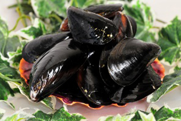 SALTSPRING MUSSELS Our premium quality Saltspring Island Mussels are grown in the incredibly rich, cool, clean coastal waters of BC. making them very sweet and plump mussels.