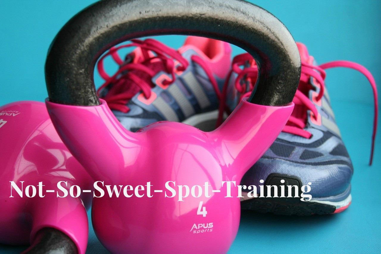 spot-training.jpg